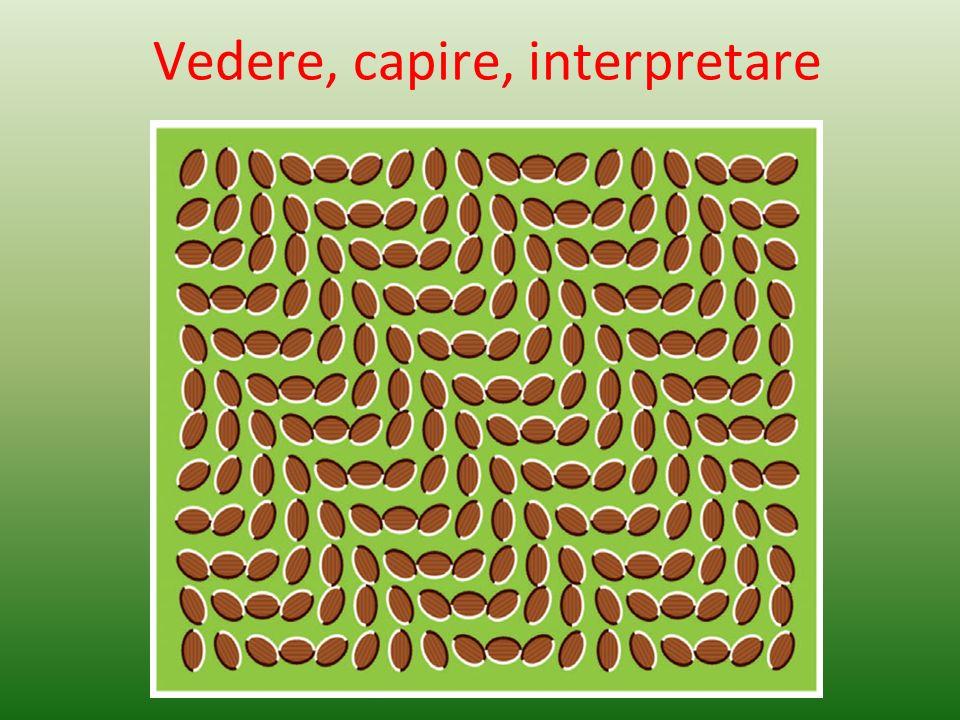 Vedere, capire, interpretare
