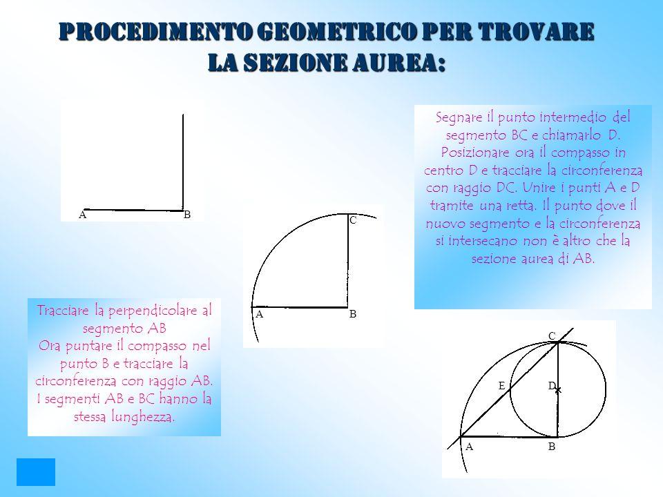 PROCEDIMENTO GEOMETRICO PER TROVARE LA SEZIONE AUREA: Tracciare la perpendicolare al segmento AB Ora puntare il compasso nel punto B e tracciare la ci