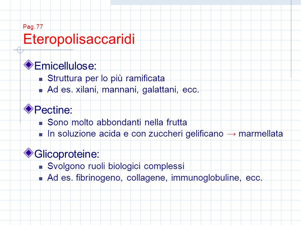Pag. 77 Eteropolisaccaridi Emicellulose: Struttura per lo più ramificata Ad es. xilani, mannani, galattani, ecc. Pectine: Sono molto abbondanti nella