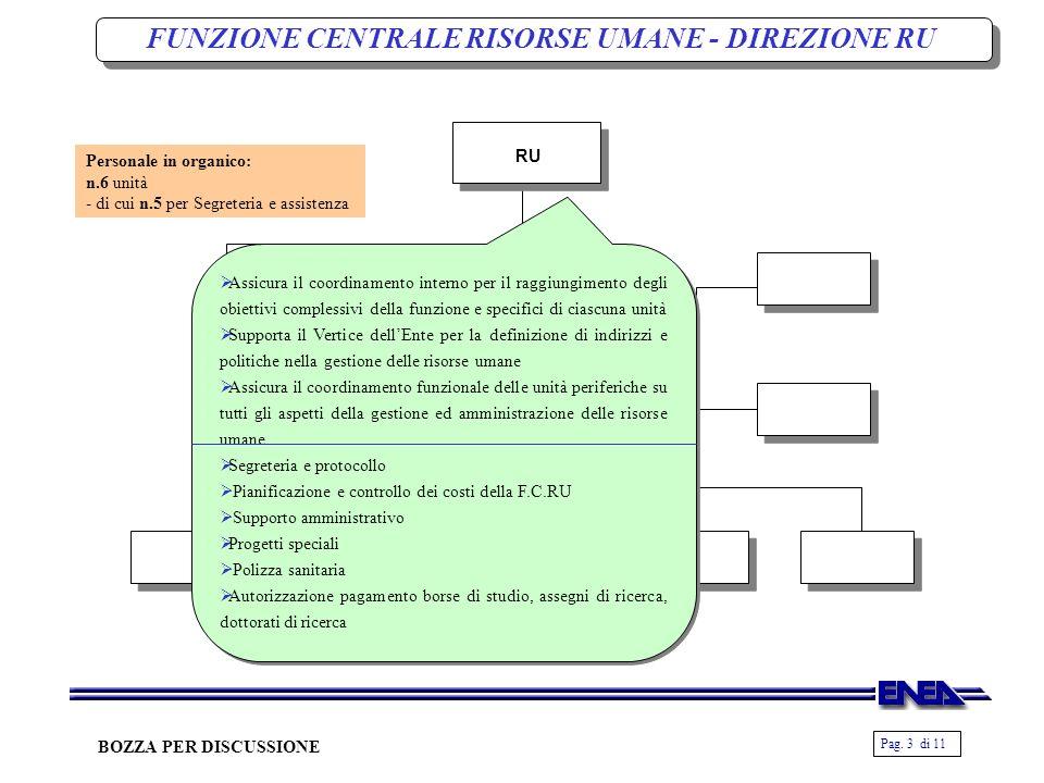 Pag. 3 di 11 BOZZA PER DISCUSSIONE RU Assicura il coordinamento interno per il raggiungimento degli obiettivi complessivi della funzione e specifici d