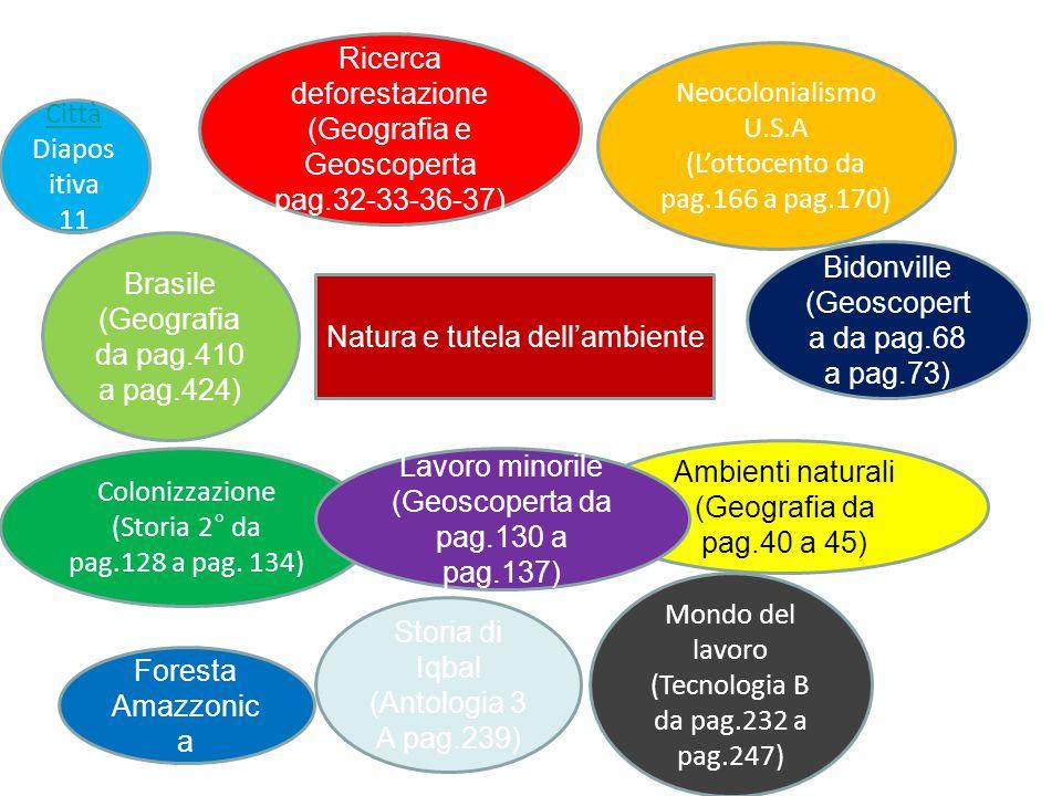 Natura e tutela dellambiente Ricerca deforestazione (Geografia e Geoscoperta pag.32-33-36-37) Neocolonialismo U.S.A (Lottocento da pag.166 a pag.170)