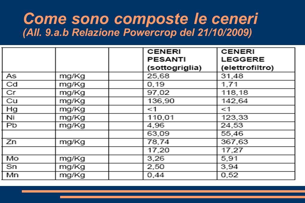 Come sono composte le ceneri (All. 9.a.b Relazione Powercrop del 21/10/2009)