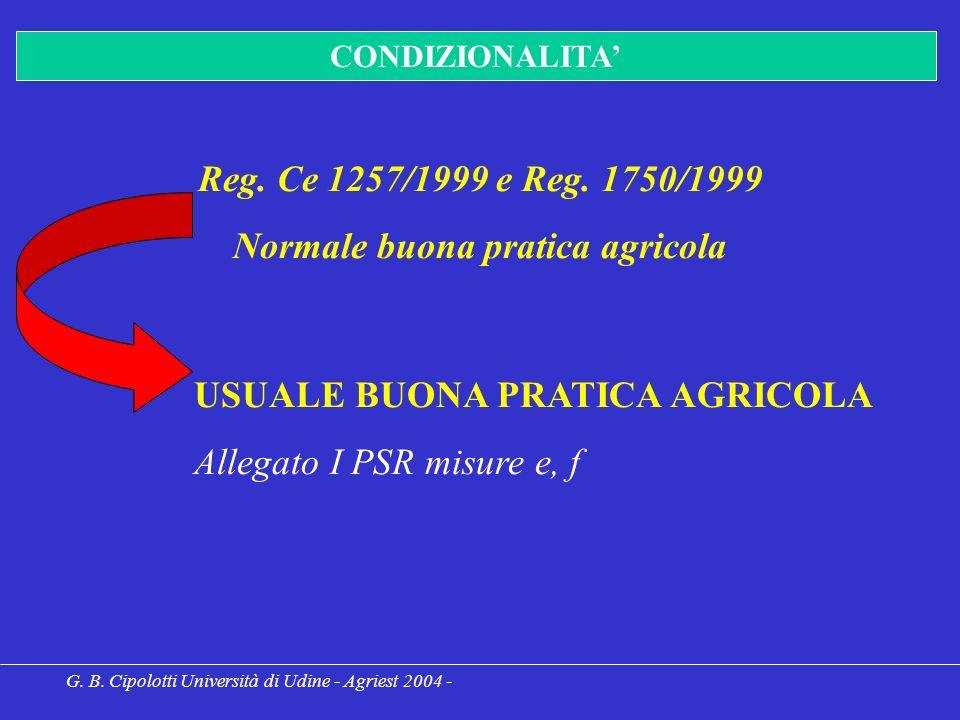 G. B. Cipolotti Università di Udine - Agriest 2004 - CONDIZIONALITA Reg.