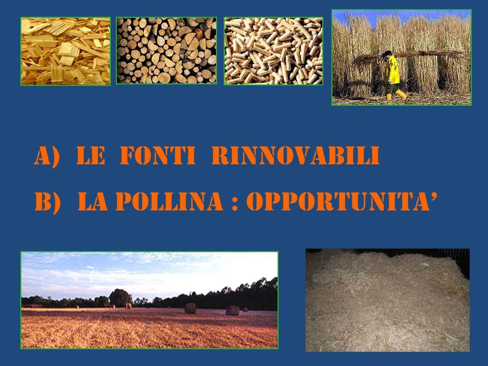 A) LE FONTI RINNOVABILI B) LA POLLINA : OPPORTUNITA
