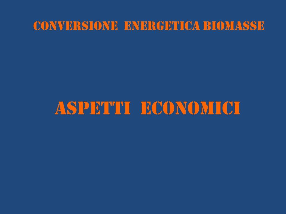 conversione energetica BIOMASSE ASPETTI ECONOMICI