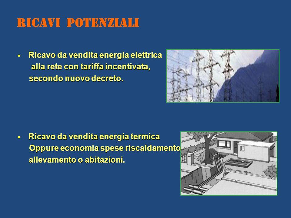 Ricavi Potenziali Ricavo da vendita energia elettrica Ricavo da vendita energia elettrica alla rete con tariffa incentivata, alla rete con tariffa inc