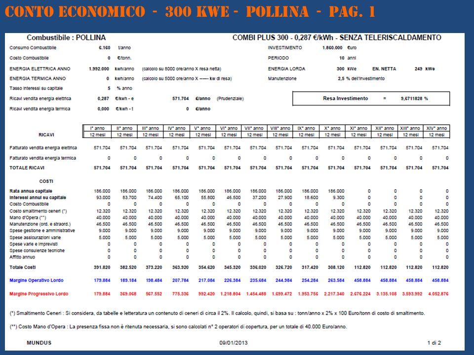 CONTO ECONOMICO - 300 kWe - POLLINA - Pag. 1