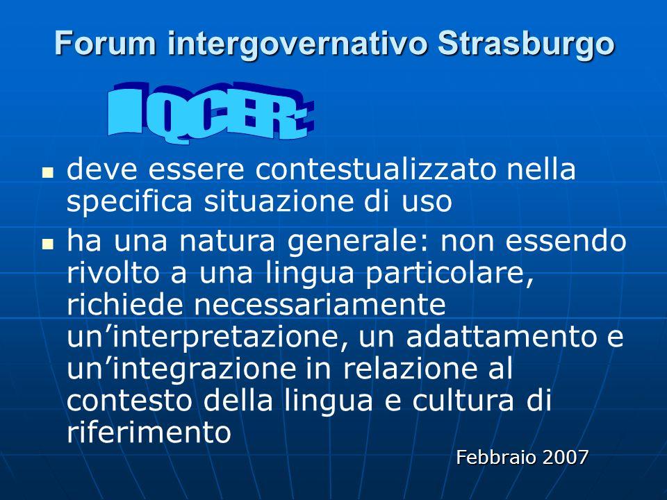 Forum intergovernativo Strasburgo deve essere contestualizzato nella specifica situazione di uso ha una natura generale: non essendo rivolto a una lingua particolare, richiede necessariamente uninterpretazione, un adattamento e unintegrazione in relazione al contesto della lingua e cultura di riferimento Febbraio 2007