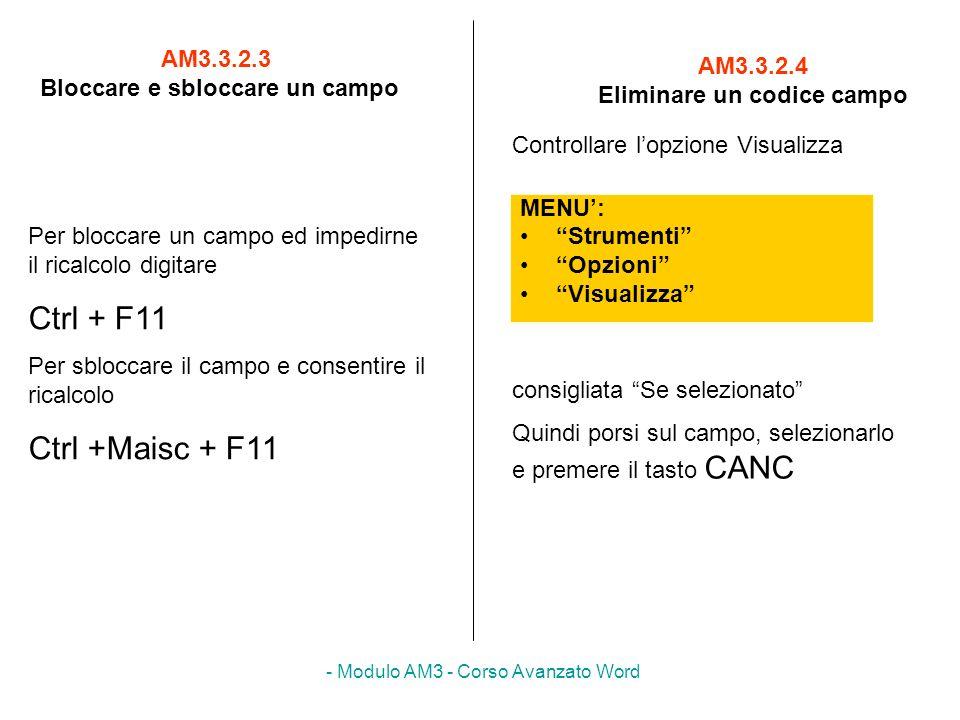 - Modulo AM3 - Corso Avanzato Word AM3.3.2.3 Bloccare e sbloccare un campo MENU: Strumenti Opzioni Visualizza AM3.3.2.4 Eliminare un codice campo Per