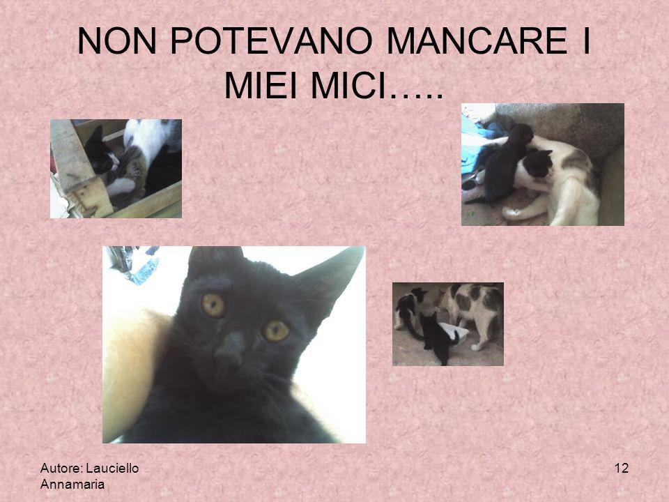 Autore: Lauciello Annamaria 12 NON POTEVANO MANCARE I MIEI MICI…..