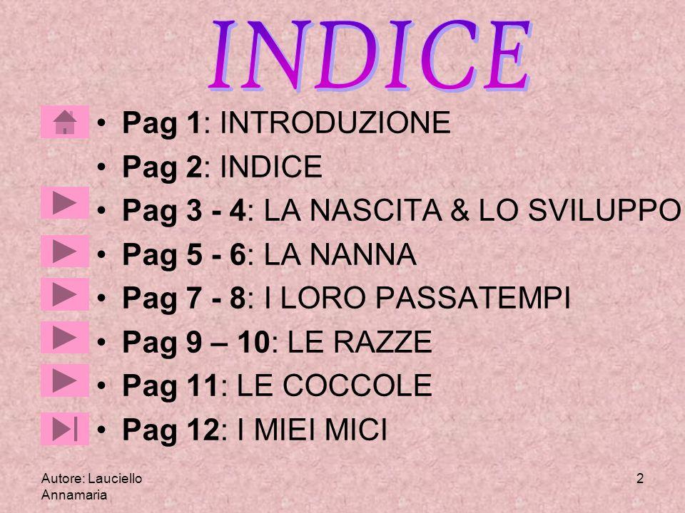 Autore: Lauciello Annamaria 2 Pag 1: INTRODUZIONE Pag 2: INDICE Pag 3 - 4: LA NASCITA & LO SVILUPPO Pag 5 - 6: LA NANNA Pag 7 - 8: I LORO PASSATEMPI P