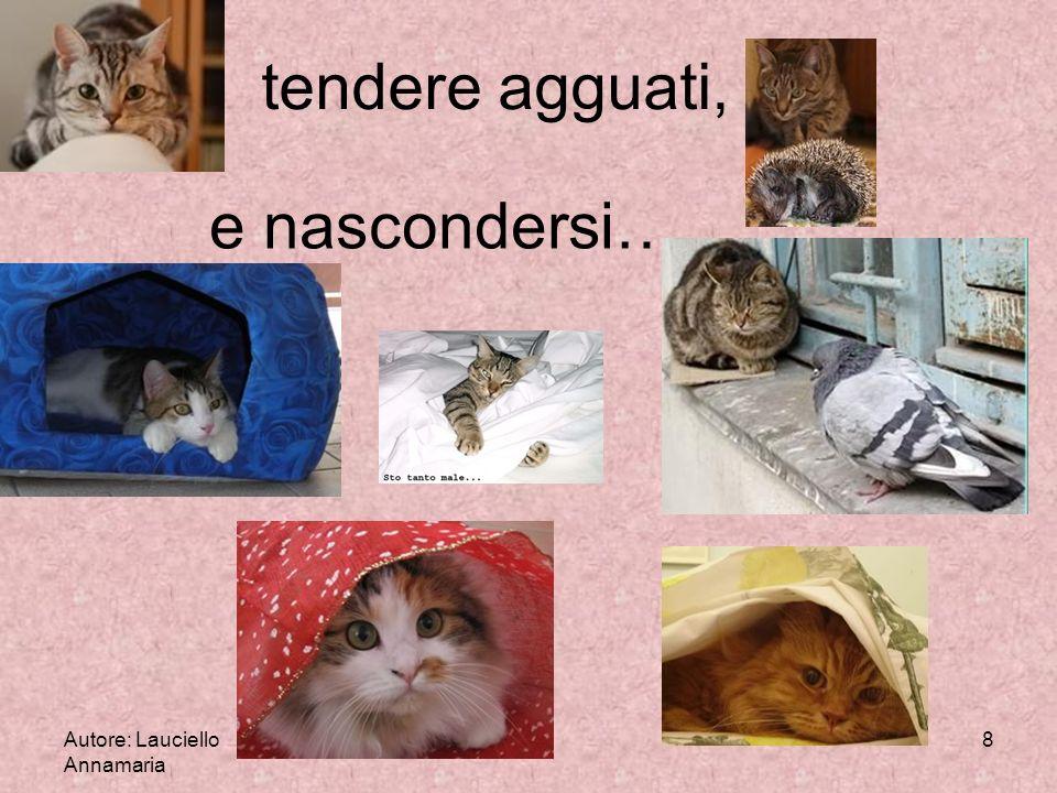 Autore: Lauciello Annamaria 8 tendere agguati, e nascondersi…..