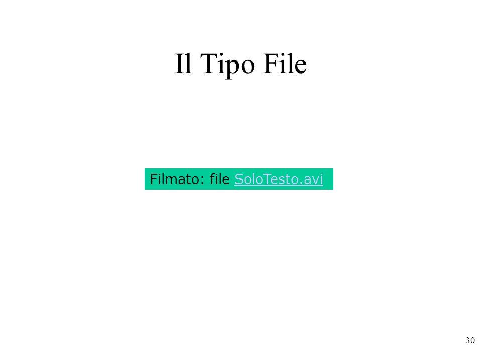 30 Il Tipo File Filmato: file SoloTesto.avi