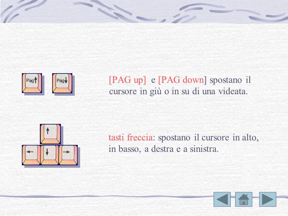 [STAMP] consente di stampare il contenuto dello schermo su carta; in ambiente windows la copia della schermata viene copiata sulla clipboard. [CANC] c