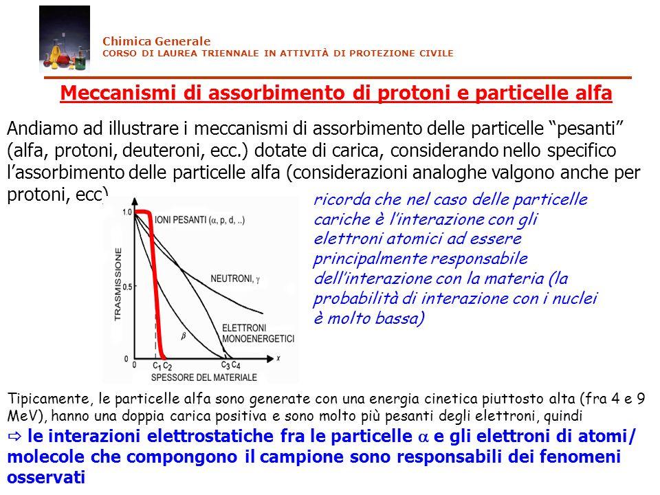 Meccanismi di assorbimento di protoni e particelle alfa Andiamo ad illustrare i meccanismi di assorbimento delle particelle pesanti (alfa, protoni, de