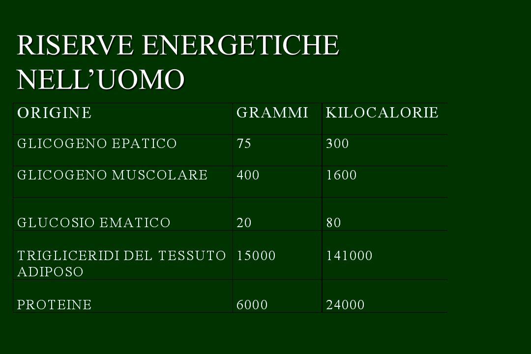 CARDIACHE …….ALTERAZIONI STRUTTURALI DEL VENTRICOLO SINISTRO De Simone et al.