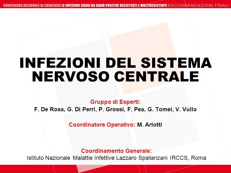 INFEZIONI DEL SISTEMA NERVOSO CENTRALE Coordinamento Generale: Istituto Nazionale Malattie Infettive Lazzaro Spallanzani IRCCS, Roma Gruppo di Esperti
