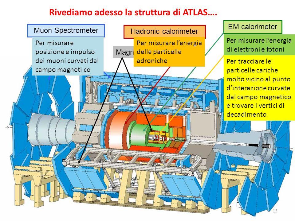 Inner Detector Hadronic calorimeter EM calorimeter Muon Spectrometer Rivediamo adesso la struttura di ATLAS…. 13 Magneti Per tracciare le particelle c