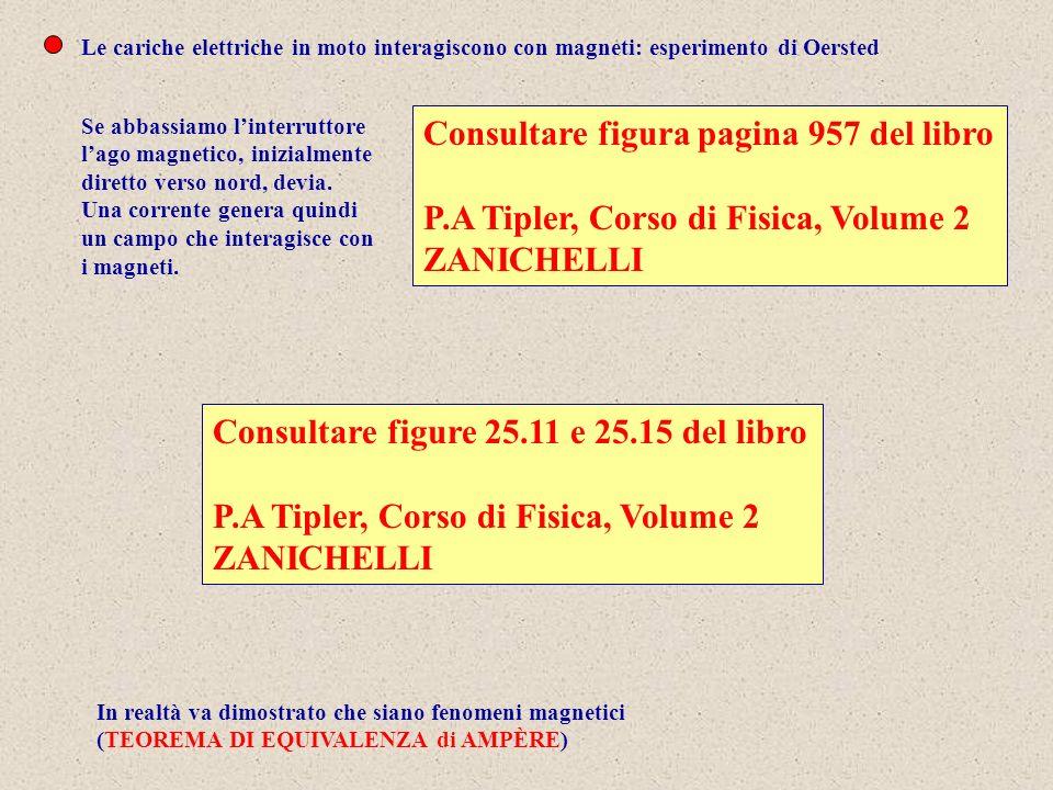 Inoltre si scoprì pure che cariche elettriche in moto in campi magnetici subiscono delle forze Consultare figure 8.12, 8.14 e 8.17 del libro P.M.