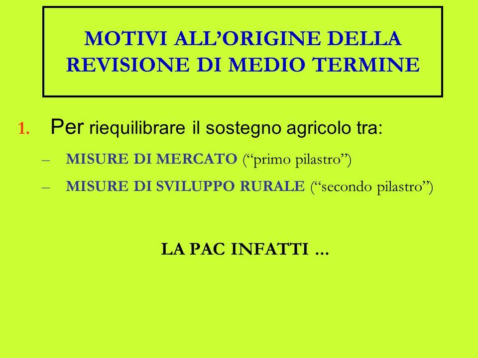 MOTIVI ALLORIGINE DELLA REVISIONE DI MEDIO TERMINE 1.