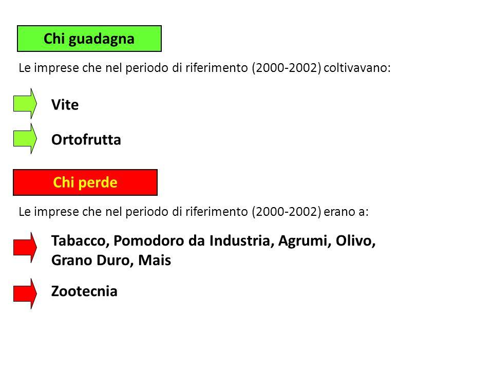 Chi guadagna Chi perde Vite Ortofrutta Le imprese che nel periodo di riferimento (2000-2002) coltivavano: Le imprese che nel periodo di riferimento (2