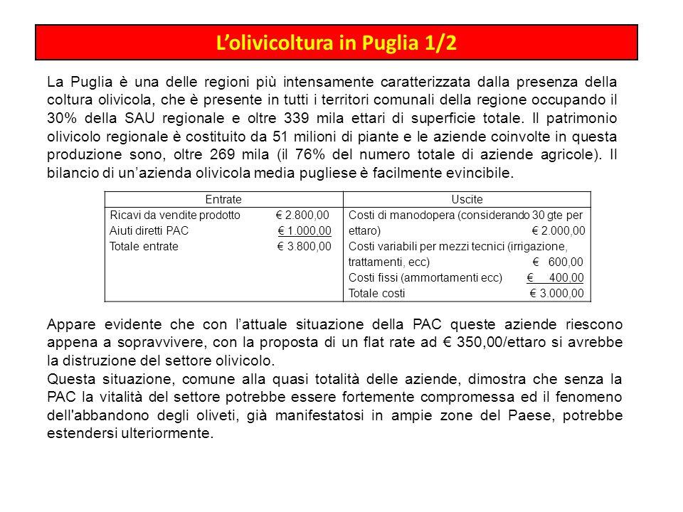 Lolivicoltura in Puglia 1/2 La Puglia è una delle regioni più intensamente caratterizzata dalla presenza della coltura olivicola, che è presente in tu