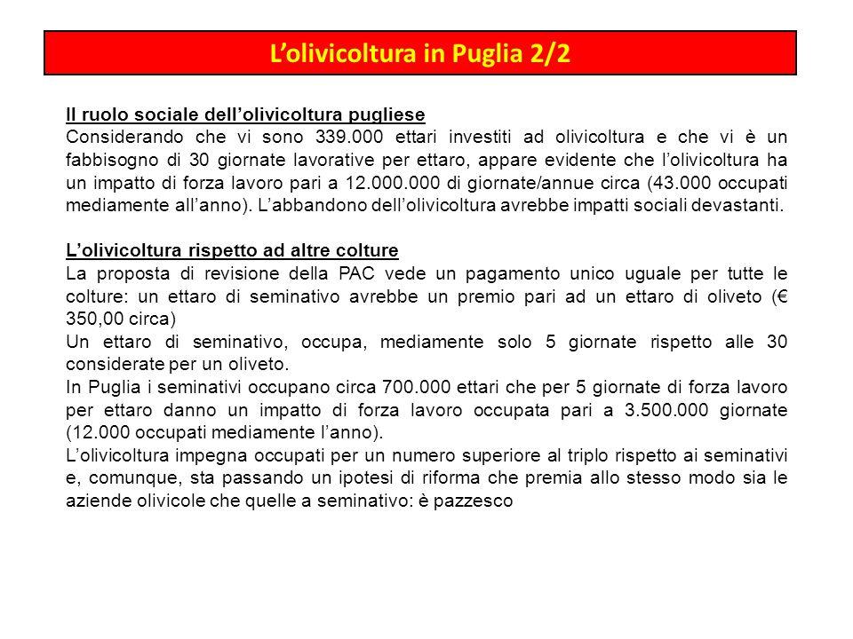 Lolivicoltura in Puglia 2/2 Il ruolo sociale dellolivicoltura pugliese Considerando che vi sono 339.000 ettari investiti ad olivicoltura e che vi è un