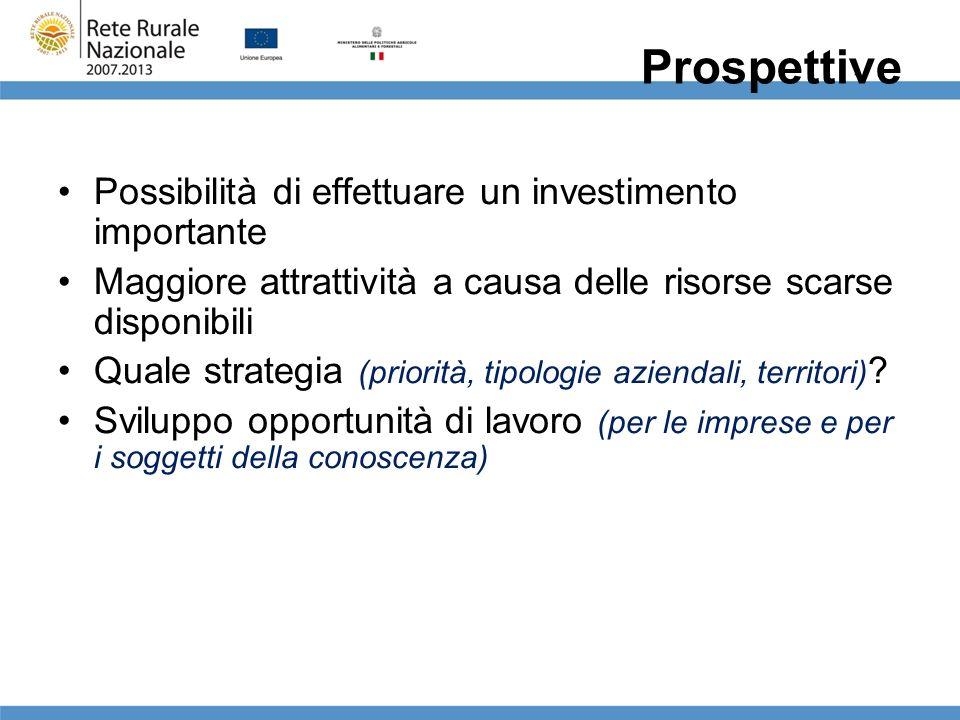 Prospettive Possibilità di effettuare un investimento importante Maggiore attrattività a causa delle risorse scarse disponibili Quale strategia (prior