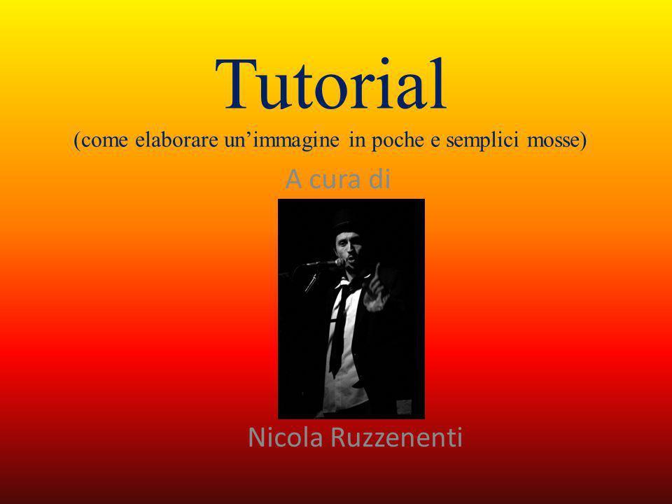 Tutorial (come elaborare unimmagine in poche e semplici mosse) A cura di Nicola Ruzzenenti