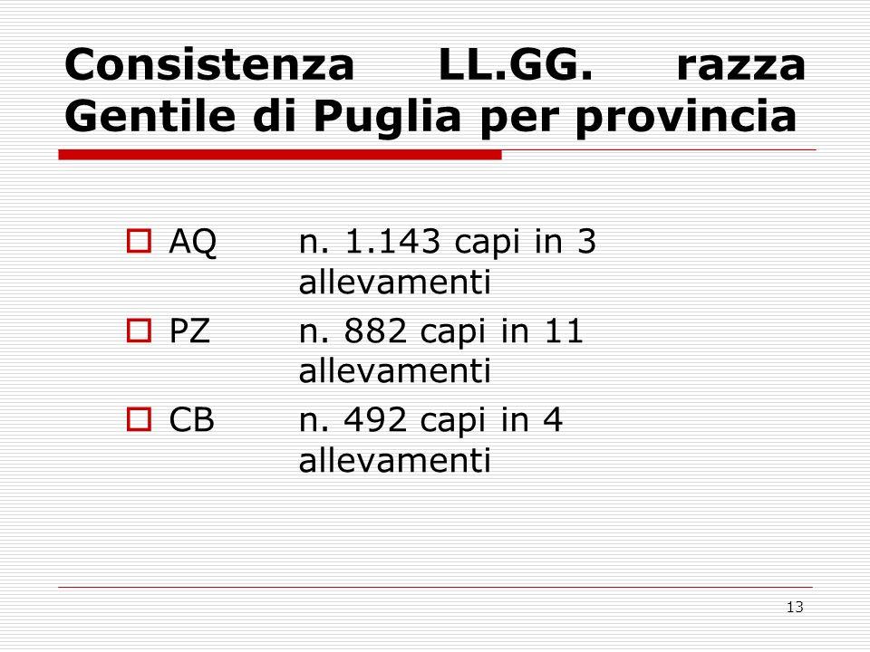 12 Consistenza LL.GG.razza Sopravissana per provincia RIn.