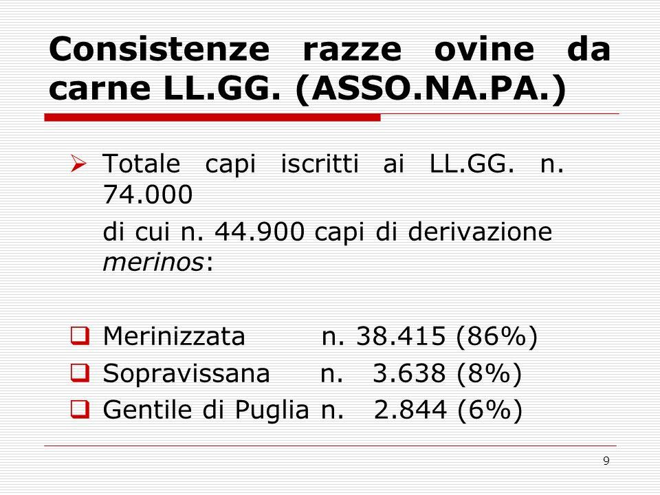 8 Razze ovine da carne di derivazione merinos dei LL.GG.