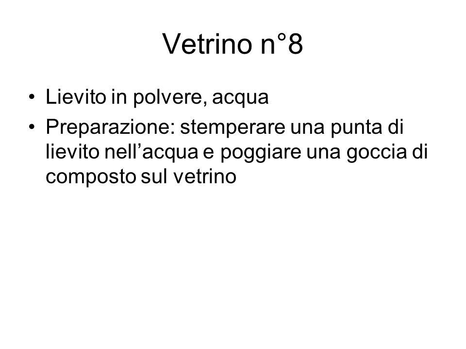 Vetrino n°8 Lievito in polvere, acqua Preparazione: stemperare una punta di lievito nellacqua e poggiare una goccia di composto sul vetrino