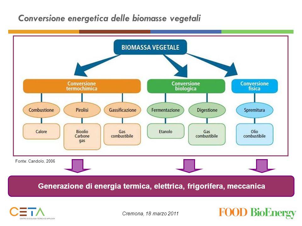 Cremona, 18 marzo 2011 Conversione energetica delle biomasse vegetali Generazione di energia termica, elettrica, frigorifera, meccanica Fonte: Candolo