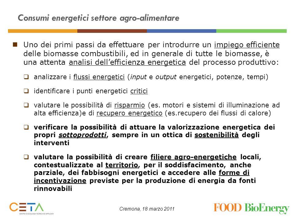 Cremona, 18 marzo 2011 Consumi energetici settore agro-alimentare Uno dei primi passi da effettuare per introdurre un impiego efficiente delle biomass