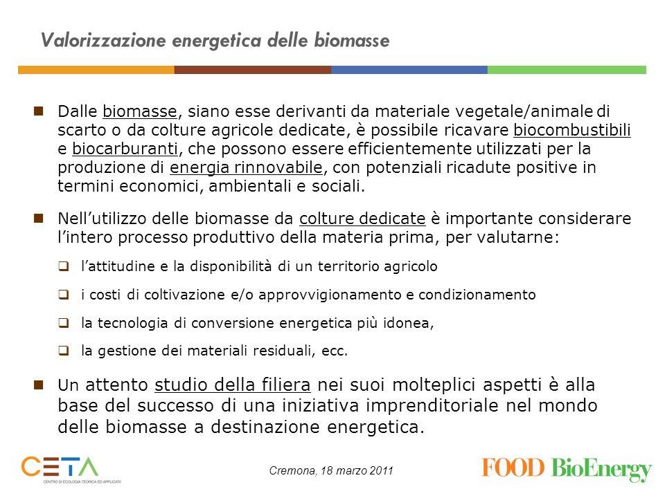 Cremona, 18 marzo 2011 Valorizzazione energetica delle biomasse Dalle biomasse, siano esse derivanti da materiale vegetale/animale di scarto o da colt