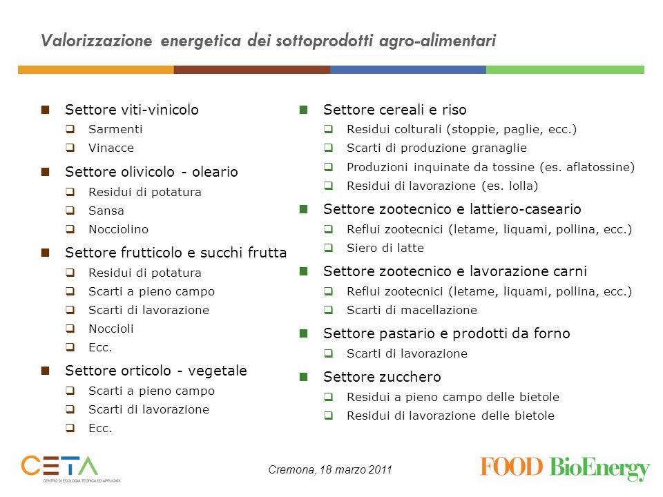 Cremona, 18 marzo 2011 Valorizzazione energetica dei sottoprodotti agro-alimentari Settore viti-vinicolo Sarmenti Vinacce Settore olivicolo - oleario