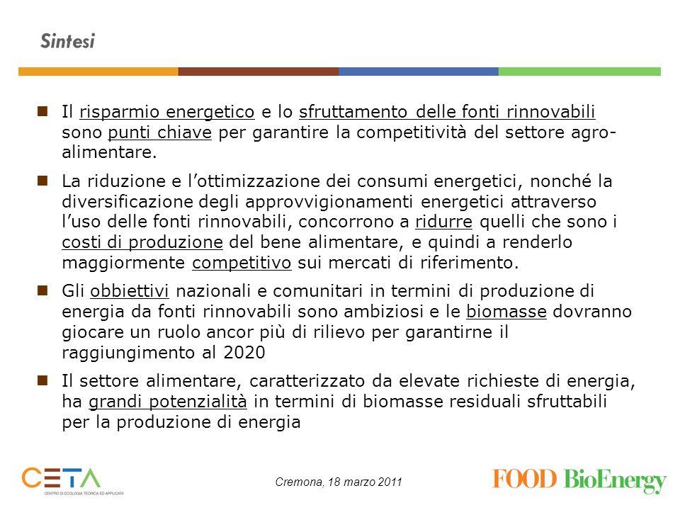 Cremona, 18 marzo 2011 Sintesi Il risparmio energetico e lo sfruttamento delle fonti rinnovabili sono punti chiave per garantire la competitività del