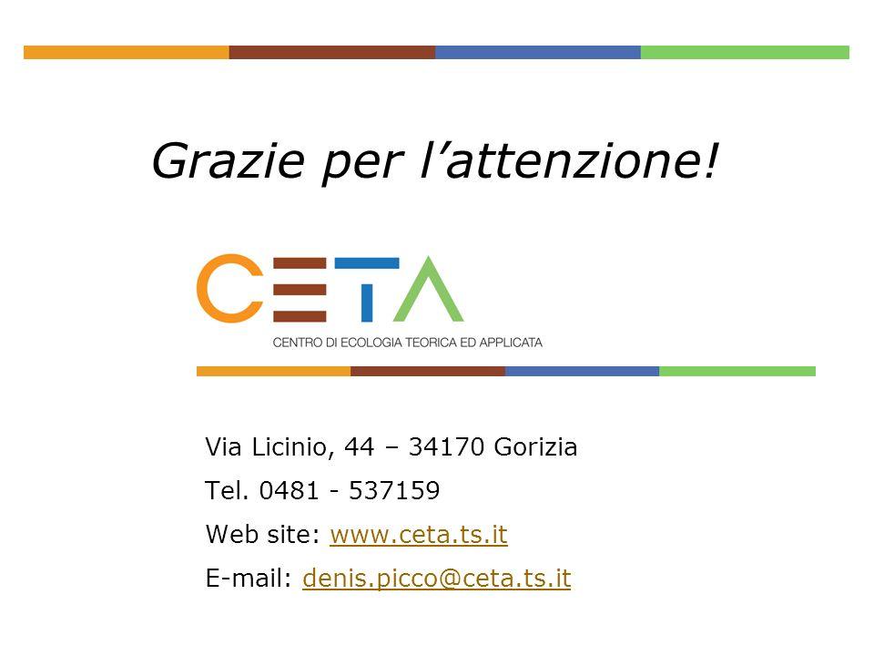 Grazie per lattenzione! Via Licinio, 44 – 34170 Gorizia Tel. 0481 - 537159 Web site: www.ceta.ts.itwww.ceta.ts.it E-mail: denis.picco@ceta.ts.itdenis.