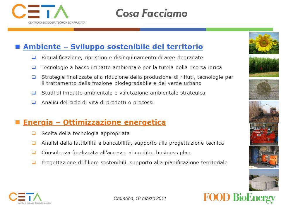 Cremona, 18 marzo 2011 Consumi energetici settore agro-alimentare Uno dei primi passi da effettuare per introdurre un impiego efficiente delle biomasse combustibili, ed in generale di tutte le biomasse, è una attenta analisi dellefficienza energetica del processo produttivo: analizzare i flussi energetici (input e output energetici, potenze, tempi) identificare i punti energetici critici valutare le possibilità di risparmio (es.