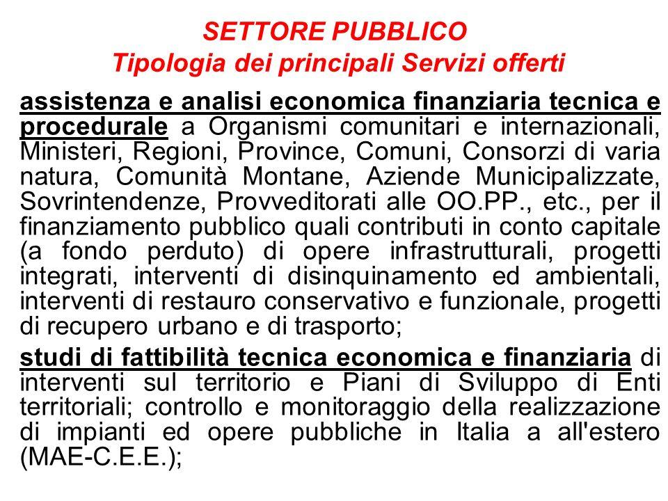 SETTORE PUBBLICO Tipologia dei principali Servizi offerti assistenza e analisi economica finanziaria tecnica e procedurale a Organismi comunitari e in