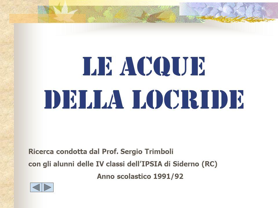 LE ACQUE DELLA LOCRIDE Ricerca condotta dal Prof. Sergio Trimboli con gli alunni delle IV classi dellIPSIA di Siderno (RC) Anno scolastico 1991/92