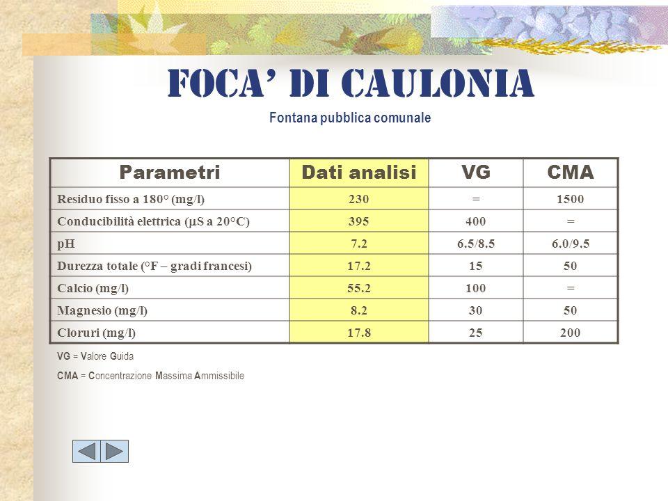 Foca di caulonia Fontana pubblica comunale ParametriDati analisiVGCMA Residuo fisso a 180° (mg/l)230=1500 Conducibilità elettrica ( S a 20°C) 395400=
