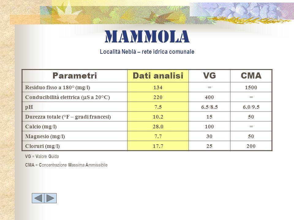 mammola Località Neblà – rete idrica comunale ParametriDati analisiVGCMA Residuo fisso a 180° (mg/l)134=1500 Conducibilità elettrica ( S a 20°C) 22040