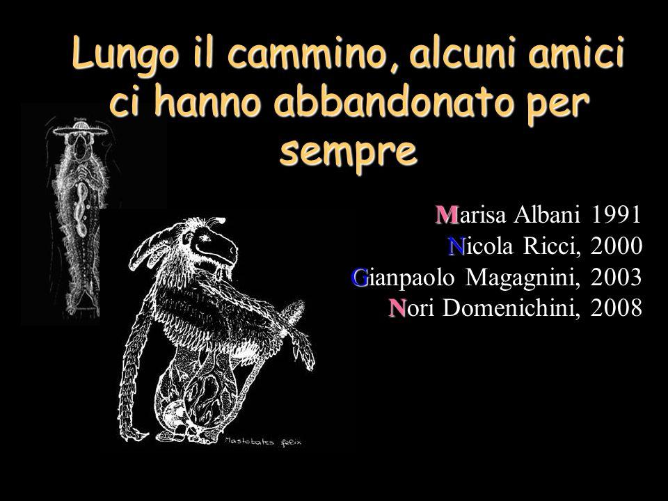 Lungo il cammino, alcuni amici ci hanno abbandonato per sempre M Marisa Albani 1991 N Nicola Ricci, 2000 G Gianpaolo Magagnini, 2003 N Nori Domenichini, 2008