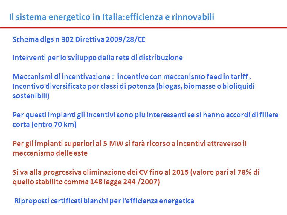 Il sistema energetico in Italia:efficienza e rinnovabili Schema dlgs n 302 Direttiva 2009/28/CE Interventi per lo sviluppo della rete di distribuzione
