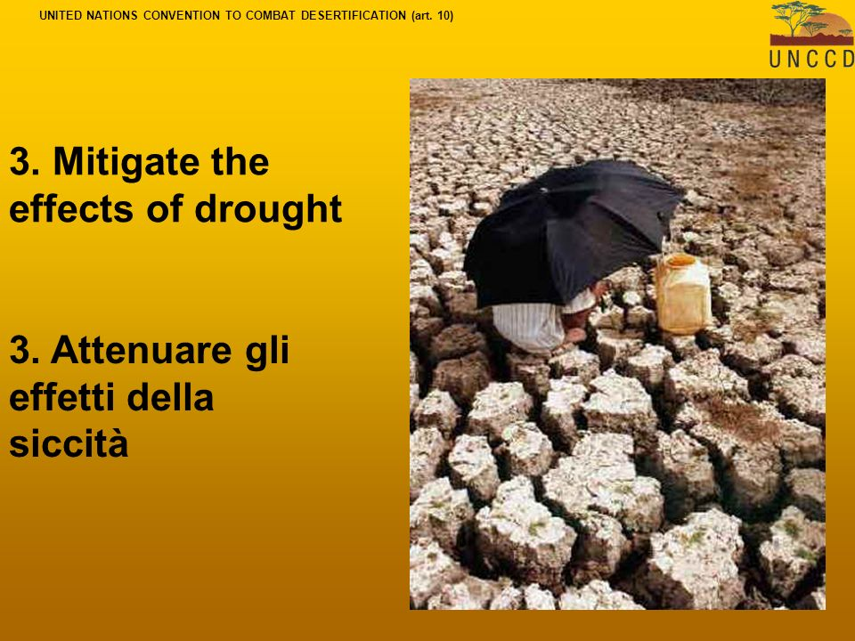 3. Mitigate the effects of drought 3.