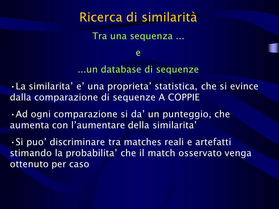Ricerca di similarità Tra una sequenza... e...un database di sequenze La similarita e una proprieta statistica, che si evince dalla comparazione di se