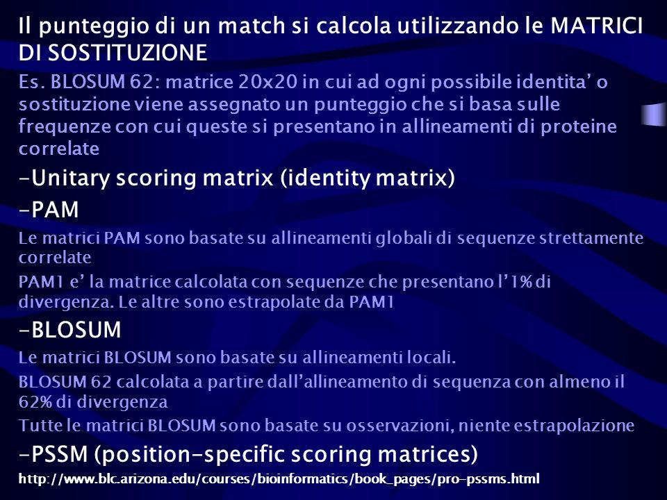 Il punteggio di un match si calcola utilizzando le MATRICI DI SOSTITUZIONE Es. BLOSUM 62: matrice 20x20 in cui ad ogni possibile identita o sostituzio