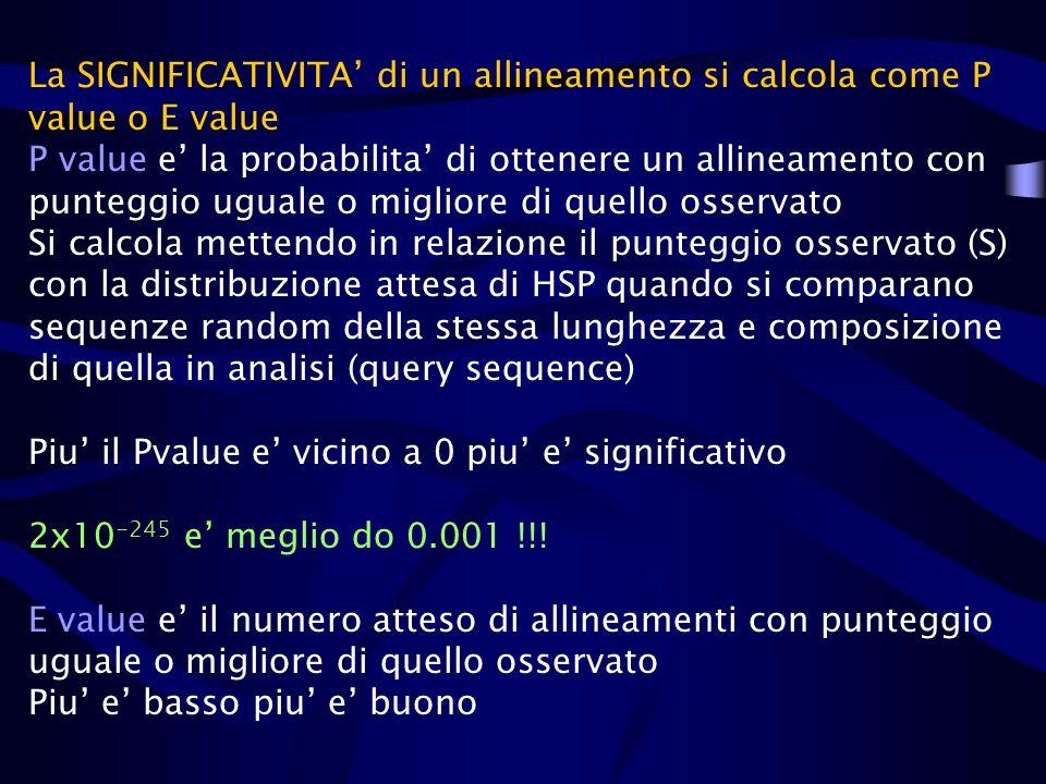 La SIGNIFICATIVITA di un allineamento si calcola come P value o E value P value e la probabilita di ottenere un allineamento con punteggio uguale o mi