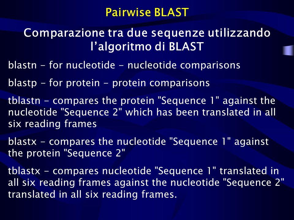 Pairwise BLAST Comparazione tra due sequenze utilizzando lalgoritmo di BLAST blastn - for nucleotide - nucleotide comparisons blastp - for protein - p